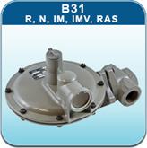 Itron Domestic - B31 R, N, IM, IMV, RAS