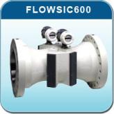 FLOWSIC600